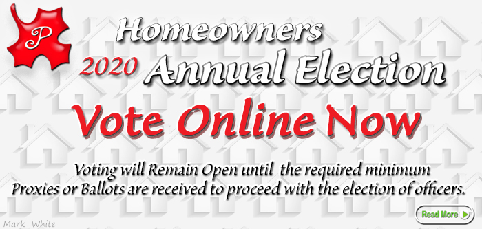 November 2020 Annual Homeowners Meeting