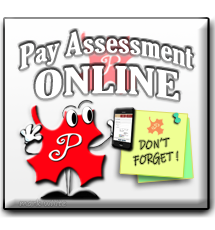 Pay Assessment Onlines